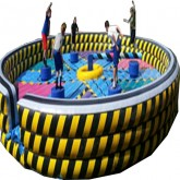 Whip It Inflatable Rental