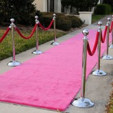 Pink Carpet Rentals Miami