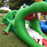 Gator Bait Slip and Slide Rentals in Miami