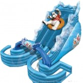 Polar Bear Dual Lane Water Slide