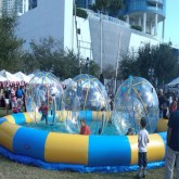 Hamster Water Race Rentals in Miami