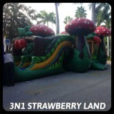 Strawberry Shortcake Bounce House Rental Miami