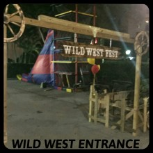 Western Theme Props & Games