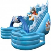 22Ft 3D Polar Plunge Inflatable Slide Rental Miami